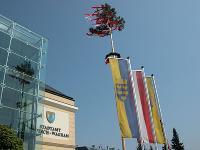 Maibaum Stadtamt 2005